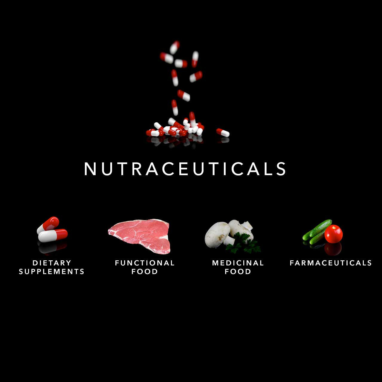 What is Nutraceuticals for Animal Pets | Rehabilitation and